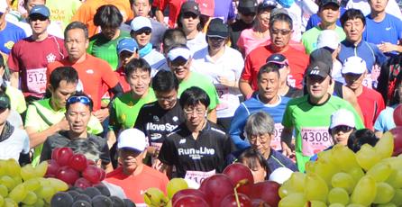 Koshu Fruits Marathon 2017
