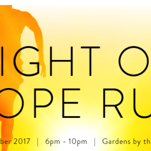 Light of hope 2017 Charity Run 2017