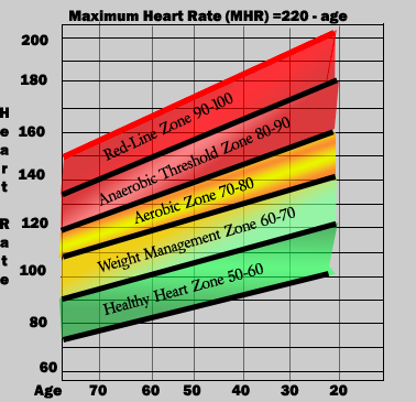 Efficient Heart Rate Training