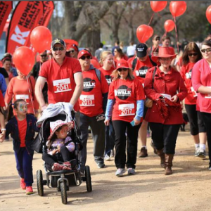Big Red Kidney Walk: Launceston 2017