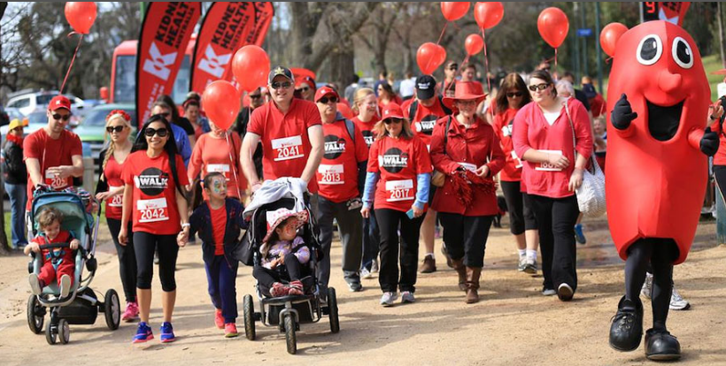 Big Red Kidney Walk: Adelaide 2017