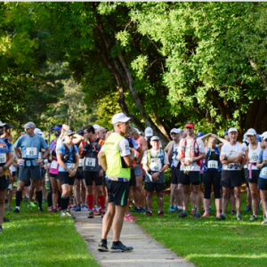 Wentworth Falls – Race 4 Short Course Series – 16 km, 13 km (2018)