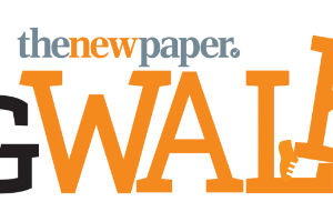 The New Paper Big Walk 2017