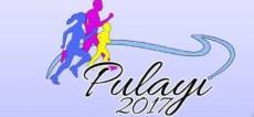 Pulayi Run 2017