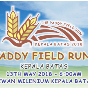 The Paddy Field Run 2018