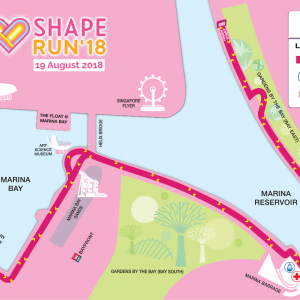 Shape Run 2018