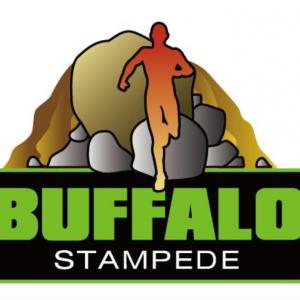 Buffalo Stampede 2018
