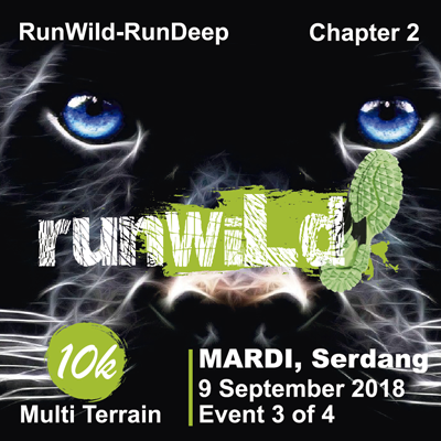 RunWild-RunDeep 2018, Chapter 2