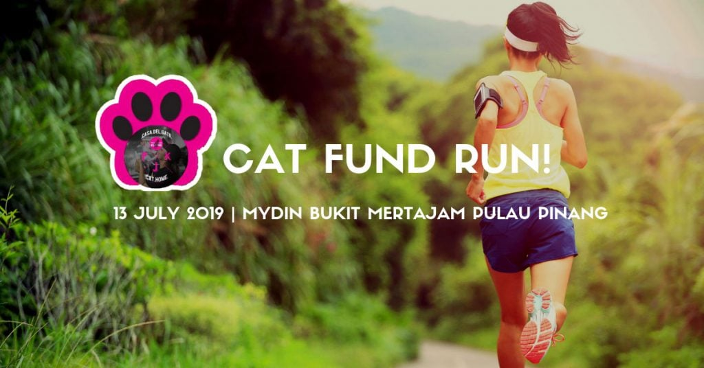 Cat Fund Run 2019