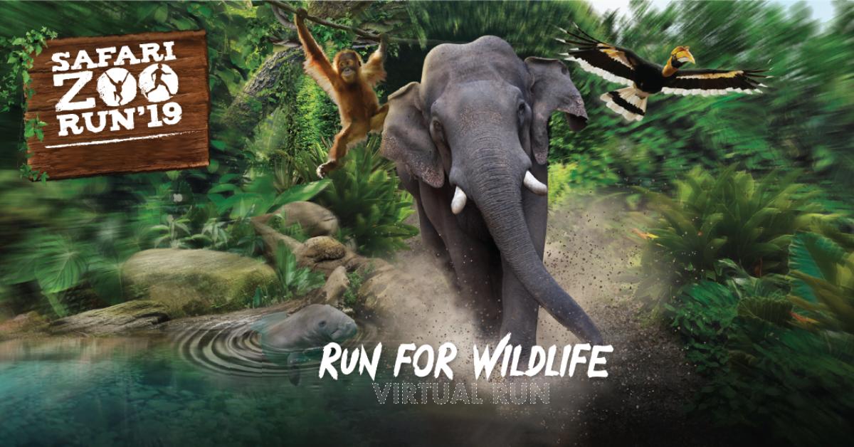 Logo of Safari Zoo Run Virtual Edition 2019