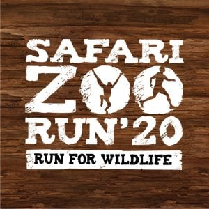 Safari Zoo Run 2020