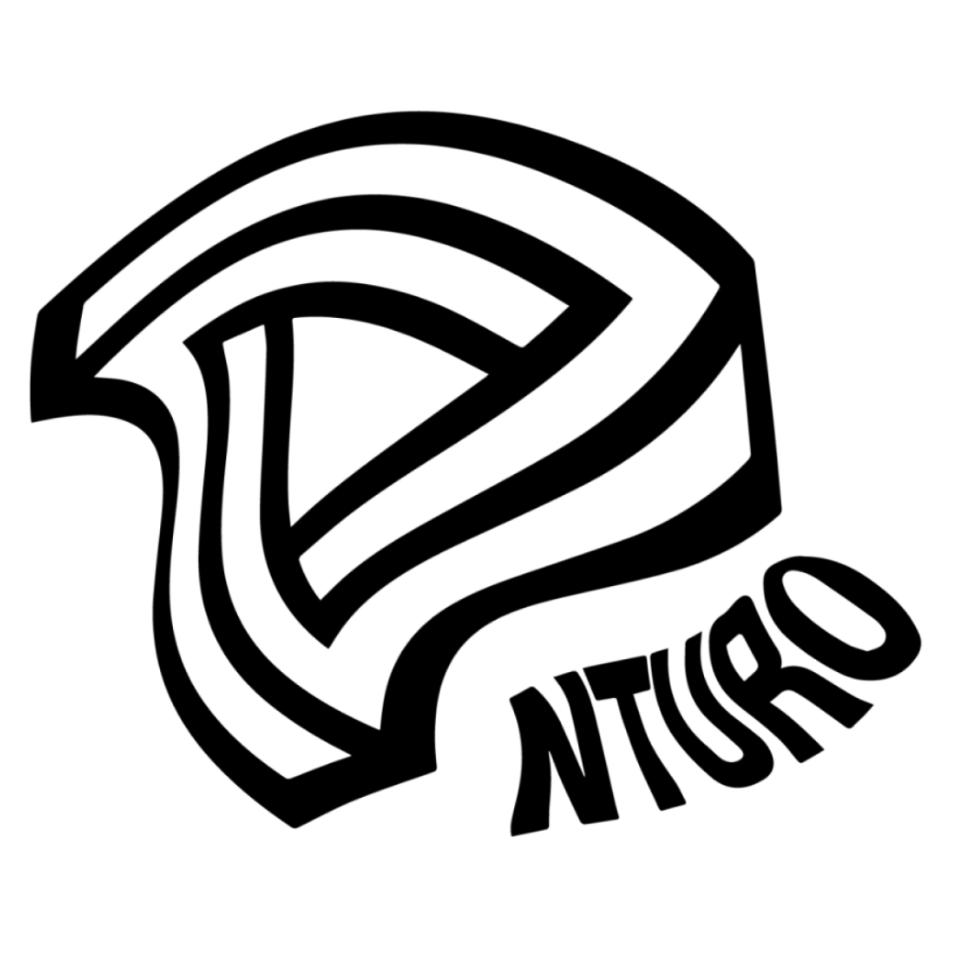 NTURO 2019