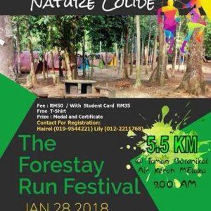 Forestay Fun Run 2018